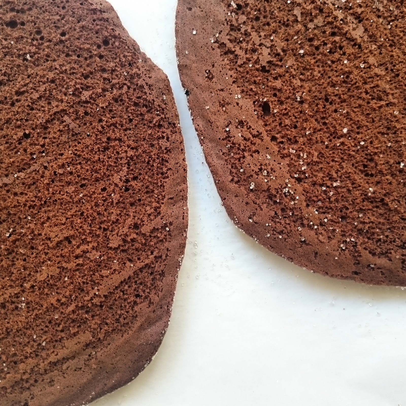 Thin Chocolate Sponges